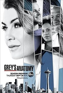 View Torrent Info: Greys.Anatomy.S14E23.HDTV.x264-KILLERS